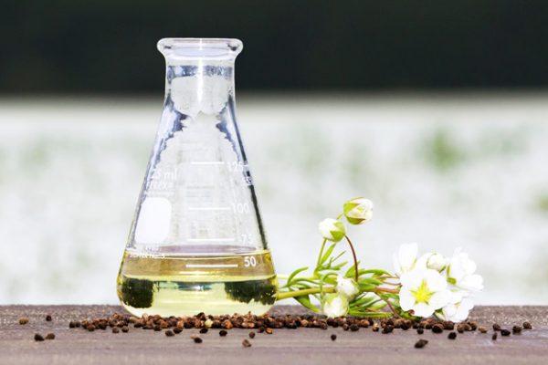 Meadowfoam Seed Oil