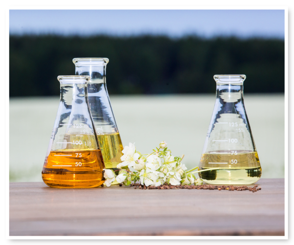 Farm-to-face botanical oils - Natural Plant Products, Inc